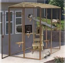 Image Result For Outdoor Cat Enclosures Connected To House Outdoor Cat Enclosure Cat Enclosure Outdoor Cats