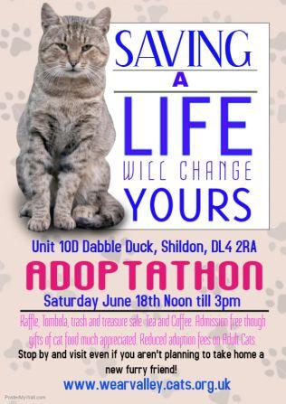 Adoptathon Adoption Cat Rescue Flyer