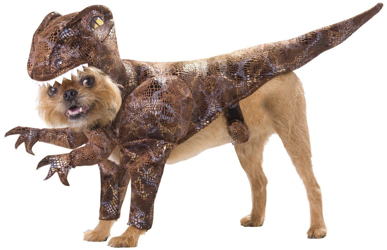 Dog Halloween Costumes Dog Halloween Costumes Asda Binatang
