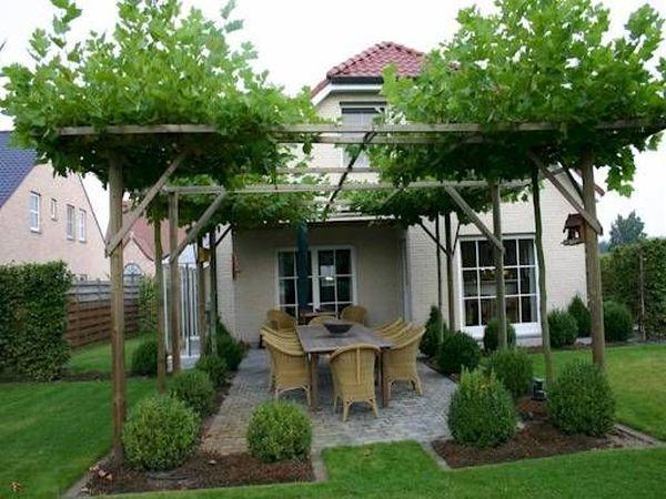 Photo of 42 ideas increíbles con pérgolas naturales en el jardín y cómo organizar el espacio alrededor de los árboles
