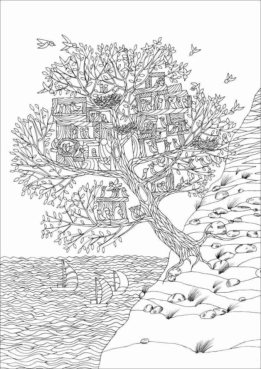 Coloring Pages Endangered Animals Inspirational Inspirational Savanna Trees Coloring Pages Fansites Bird Coloring Pages Coloring Pages Tree Coloring Page [ 1199 x 848 Pixel ]