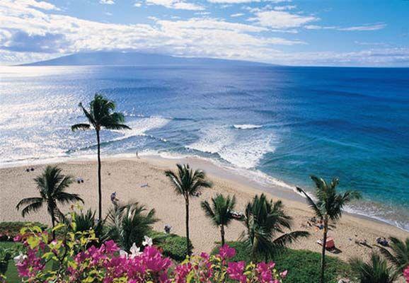 b1418592e5bc901aedd0c4b3c89e9558 - The Gardens At West Maui Pictures