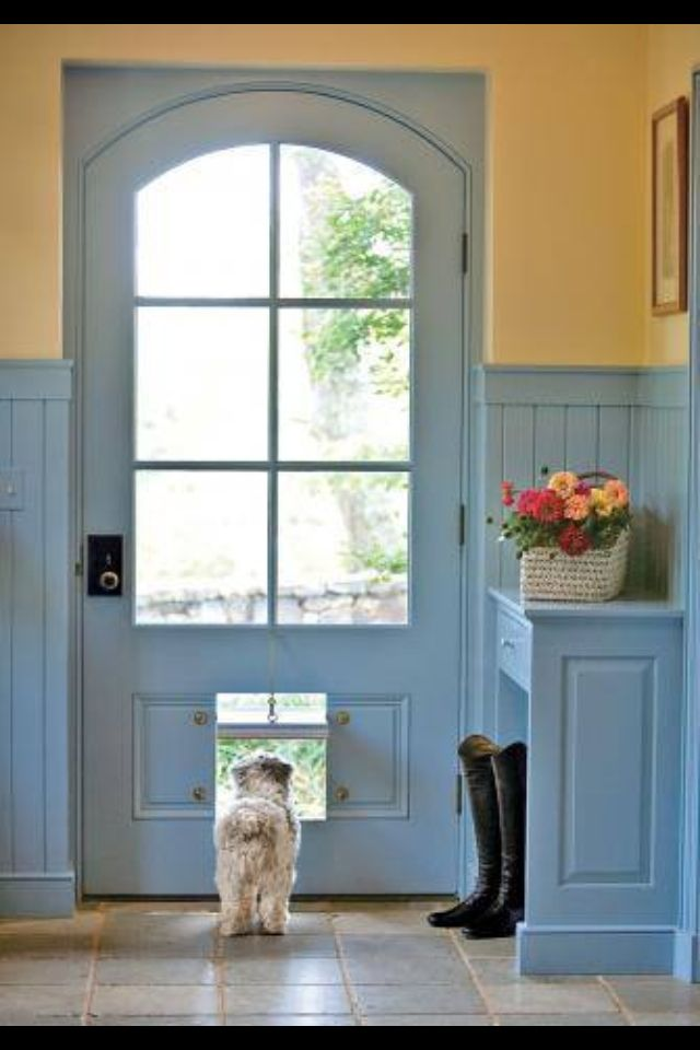 Dog Room Ideas For Building A New Home Pinterest Dog Rooms