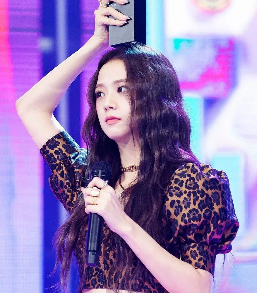 Blackpink Discover Jisoo Stage Fashion Leopard Print Bustier Top Find Blackpink Clothes Kpop Crop Tops Kpop Tops Blackpink Fashion Blackpink Jisoo Fashion