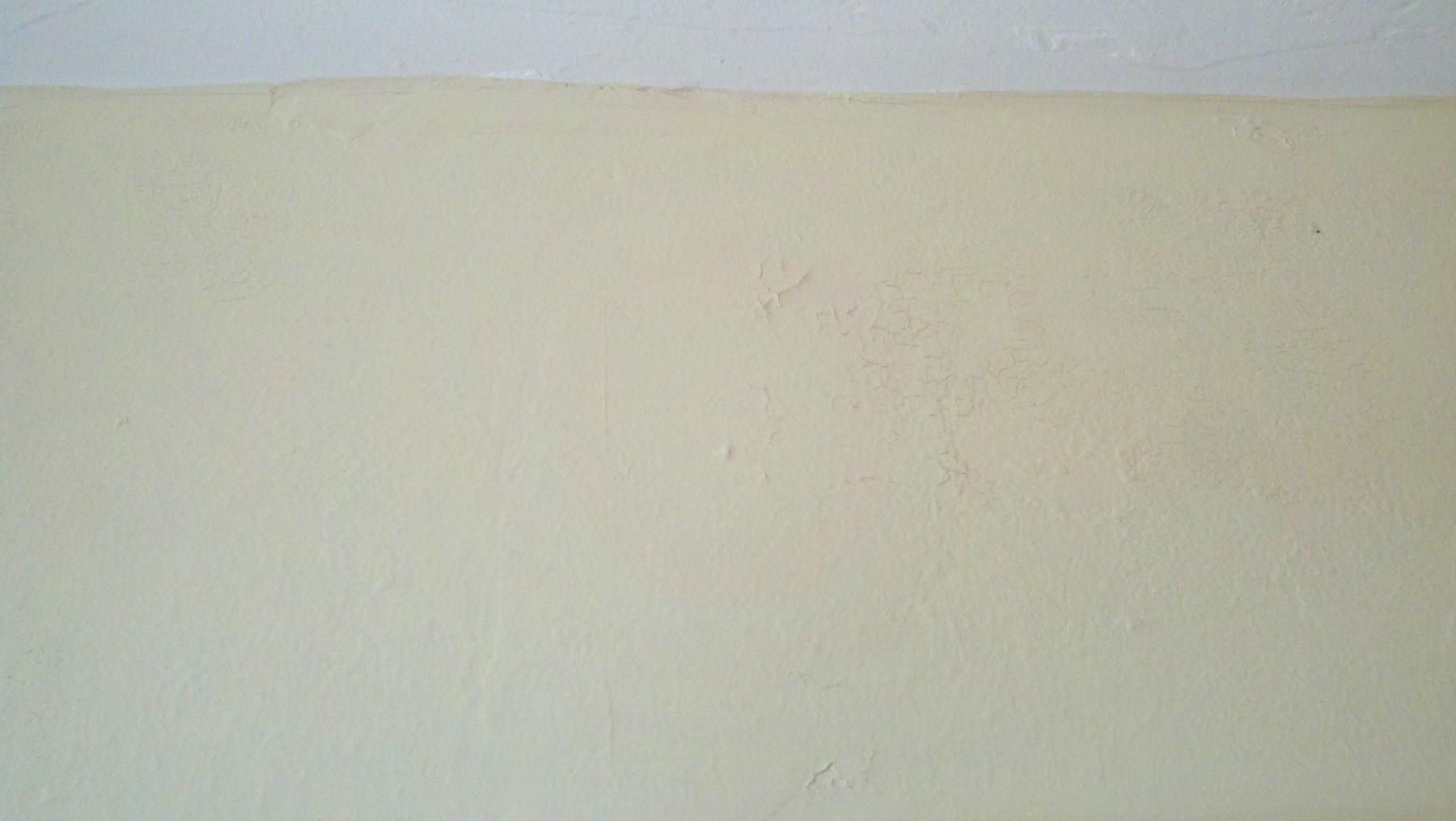 Can You Paint Over Dried Wallpaper Paste » Wallppapers Gallery