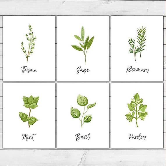 Herb Printable Wall Art Kitchen Decor Printable Decor Herb With