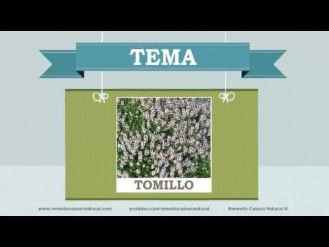 Beneficios, nutrientes y propiedades del tomillo. Más información en: http://www.remediocaseronatural.com/comidas-sanas-beneficios-del-tomillo.htm