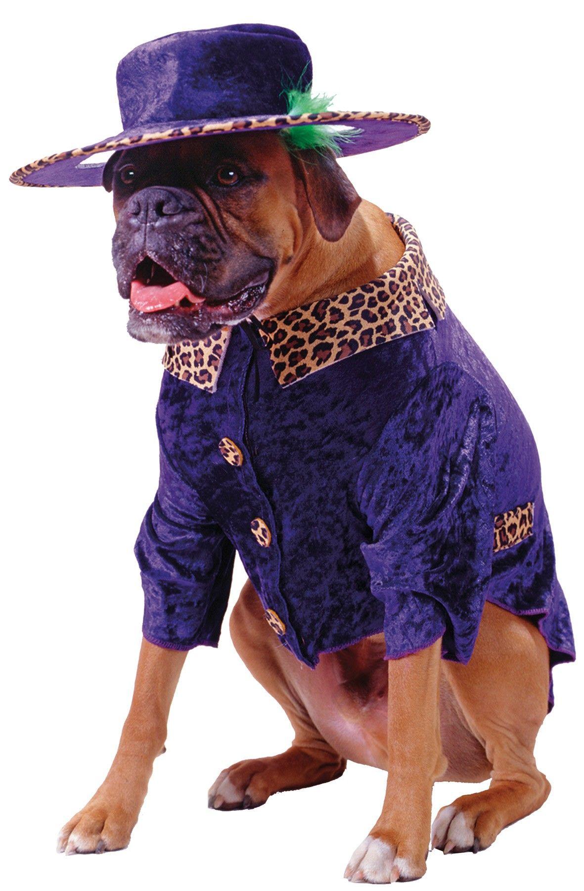 Big Daddy Dog Costume Dog Costume Costumes
