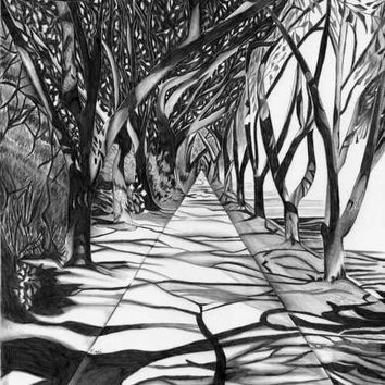 8 5 X 11 Path Of Trees Black White Gray Landscape Perspective Art Print From Original Pencil Draw Linear Perspective Art Perspective Art Landscape Drawings