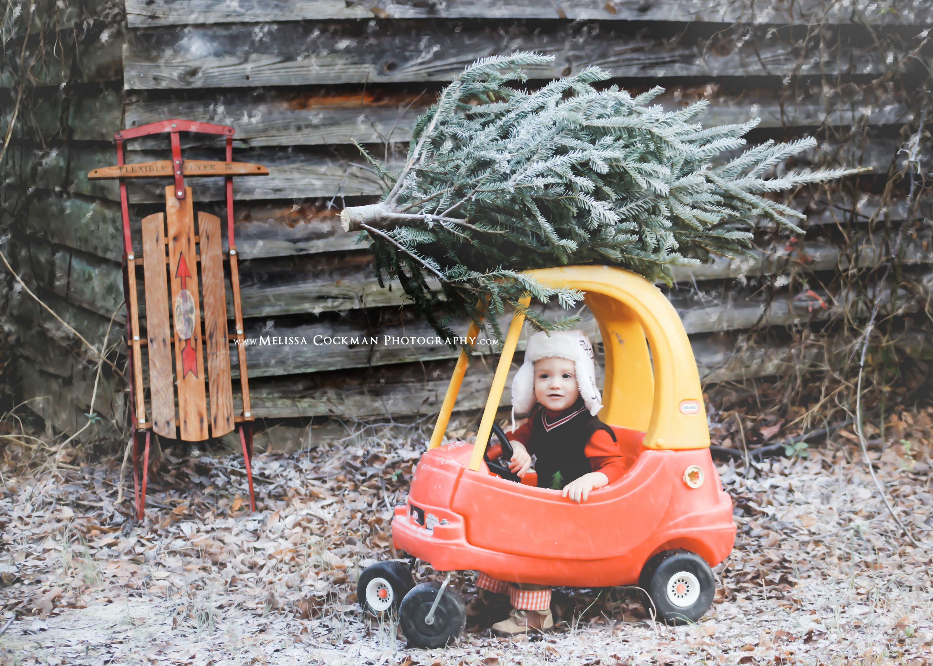 Little Boy with Christmas Tree and Cozy Coupe