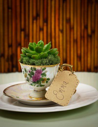 diy succulent vintage teacup wedding favors