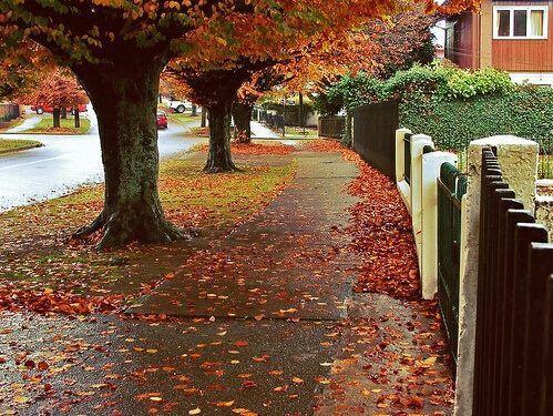 Fall  | via Facebook