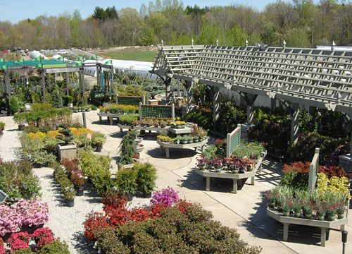 Bremec Greenhouses And Nursery With Images Garden Nursery