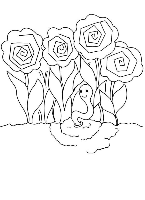 Peonies Roses Garden And Earthworm Coloring Pages