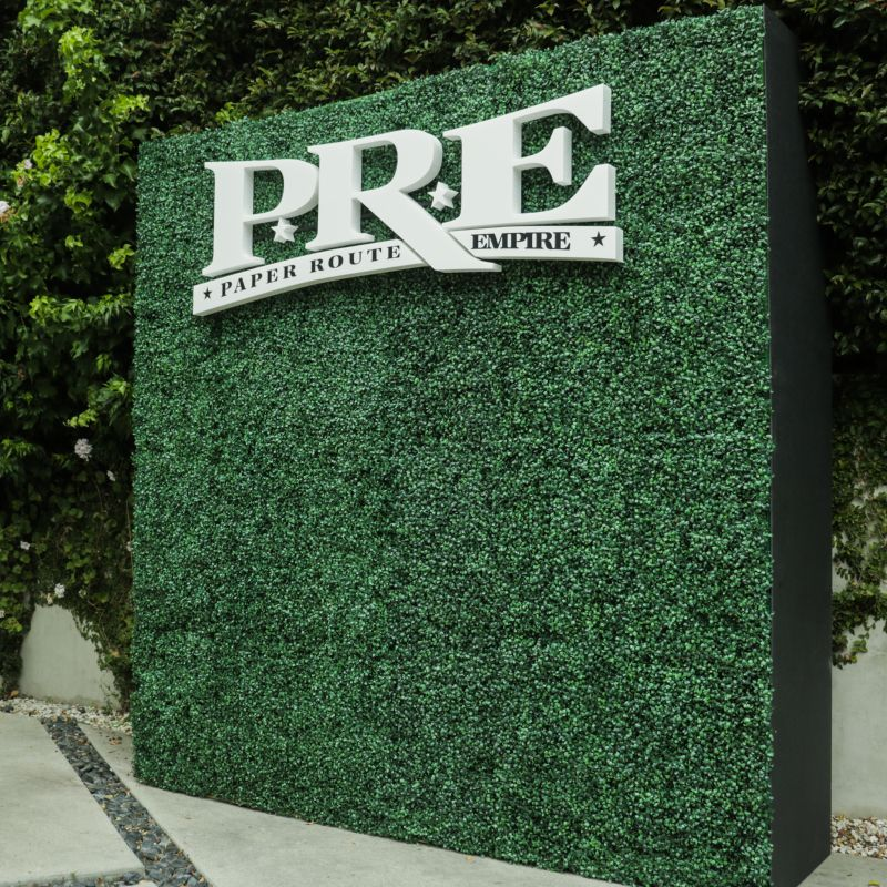 We Made This Hedge Wall With Cutout Letters For Paper