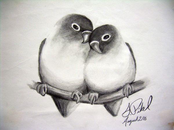 Nature Animals Drawings   drawing   Pinterest   Animal drawings ...