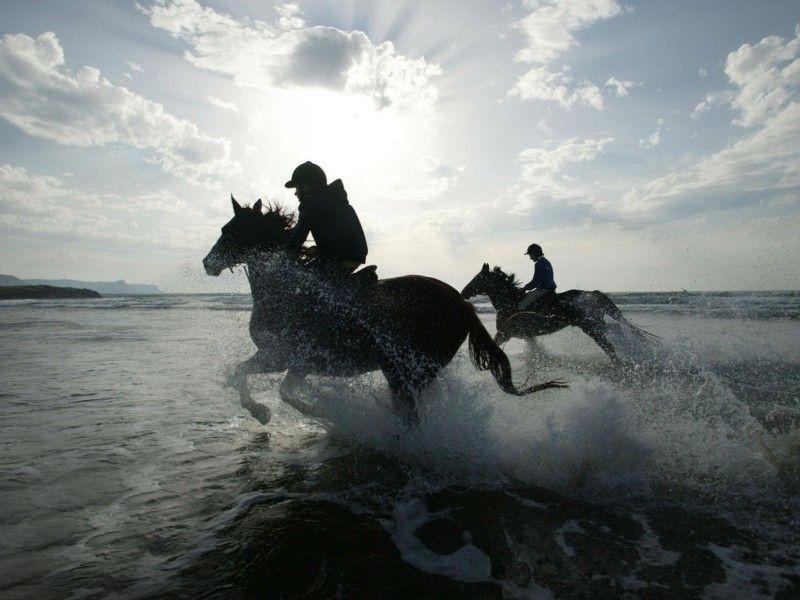 Deux Chevaux Montes Par Des Cavaliers Au Galop Dans L Eau Animales Cheval Chevaux De Course