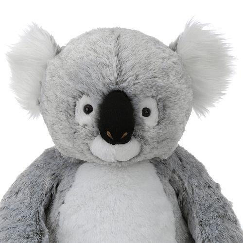 Peluche koala #koala #australia Australian Discount Club support koalas http://www.kangadiscounts.com/