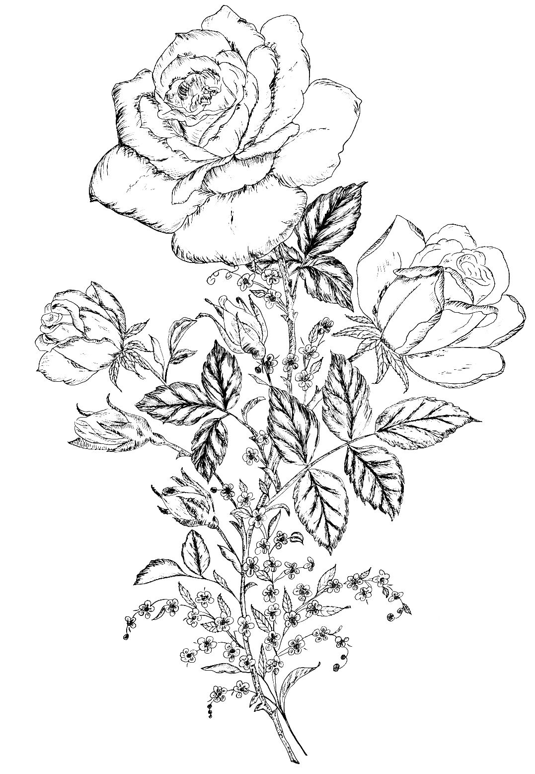 Digital Two for Tuesday: Day 2 Flower Designs | Adult Coloring Pages ...