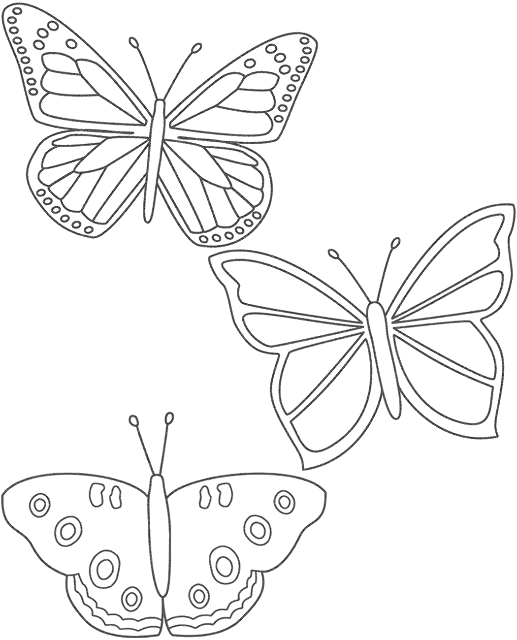 Three Butterflies Coloring Page Insects Butterfly Coloring Page Butterfly Illustration Colorful Butterflies [ 1300 x 1050 Pixel ]