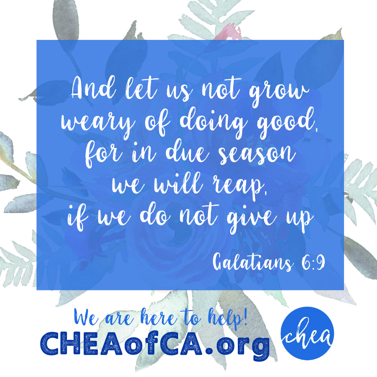 CHEA Is Here To Help With Homeschooling.