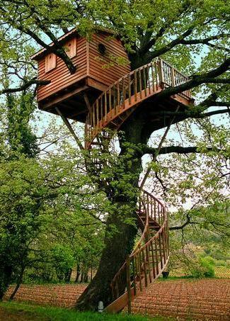 Cabane En Bois Dans Les Arbres Recherche Google With Maison Dans Les Arbre