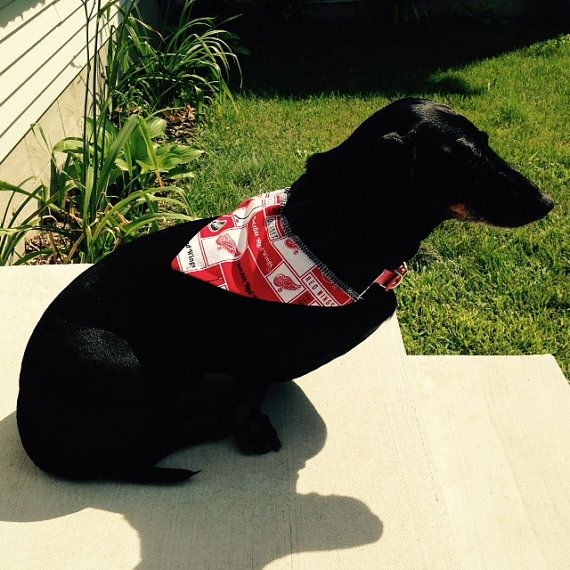 Detroit Red Wings dog bandana   Doggie Game Day Apparel   Dogs