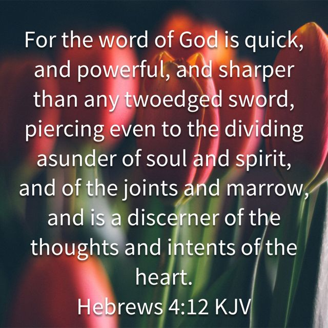 Pin by Deborah Matheny on Scripture (With images) Word