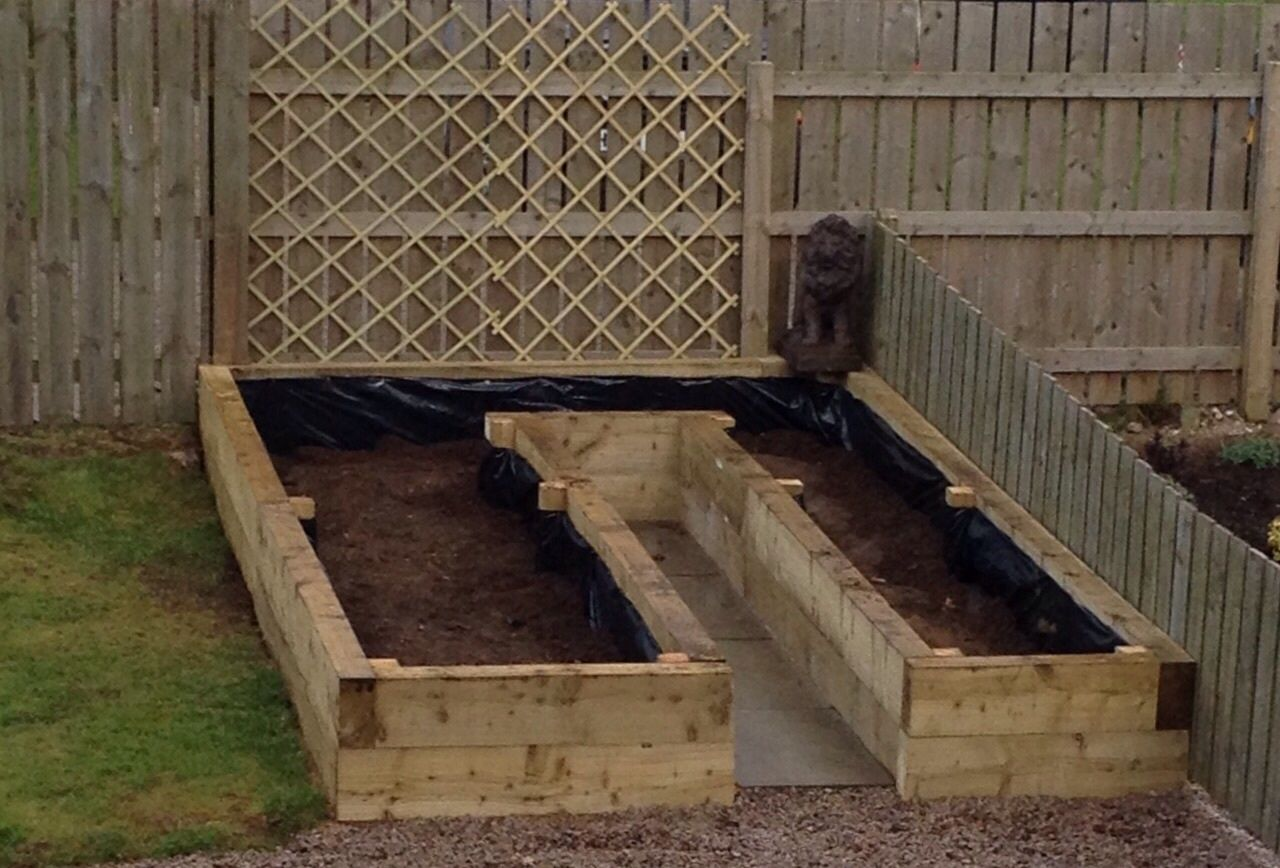 My raised vegetable bed with protective lion