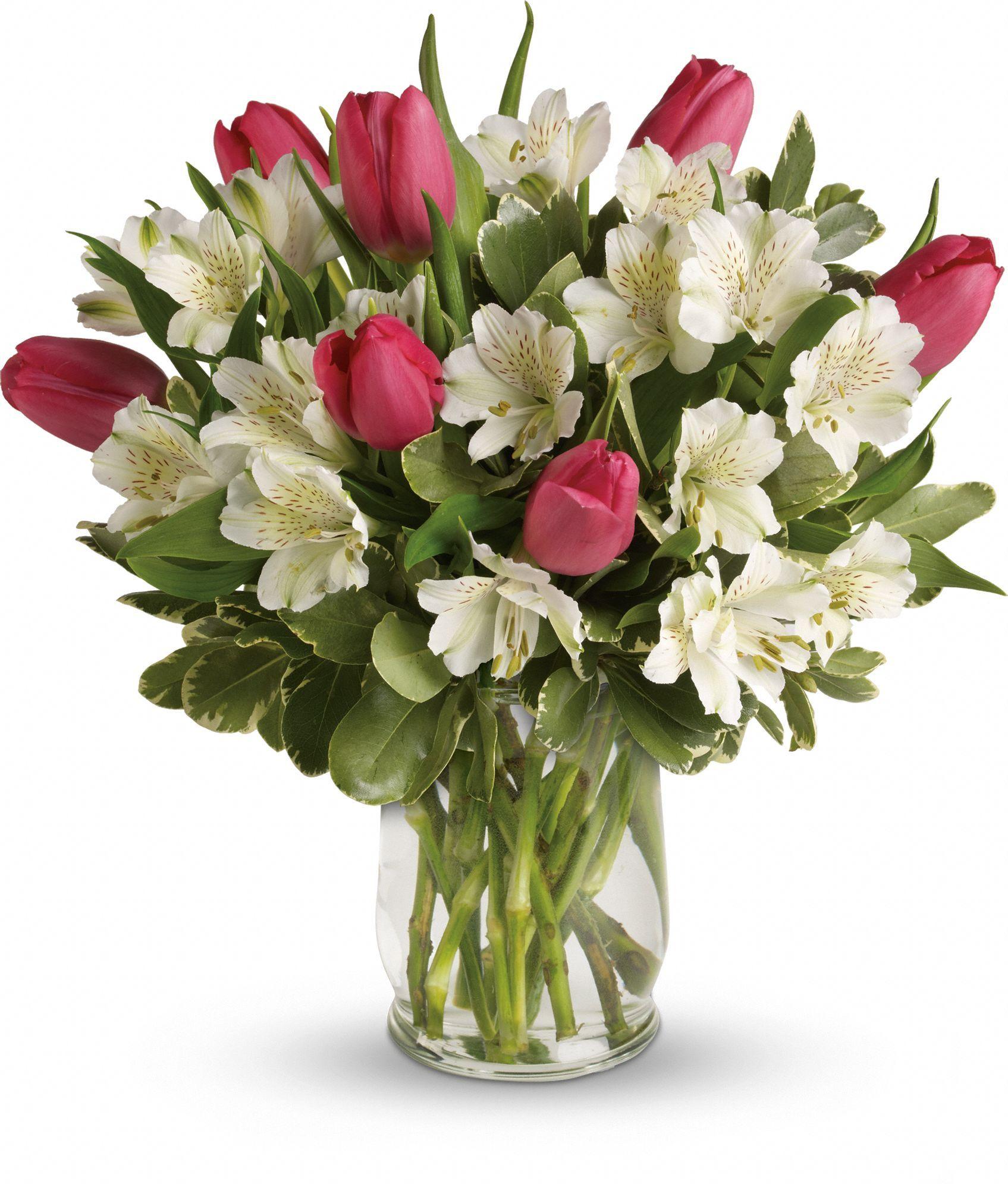 Order Tulip Bouquets Online