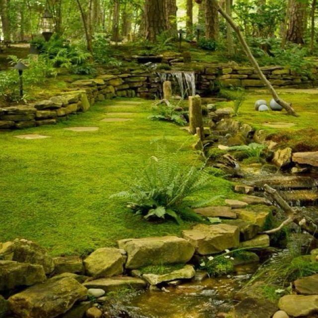 Moss & stone garden