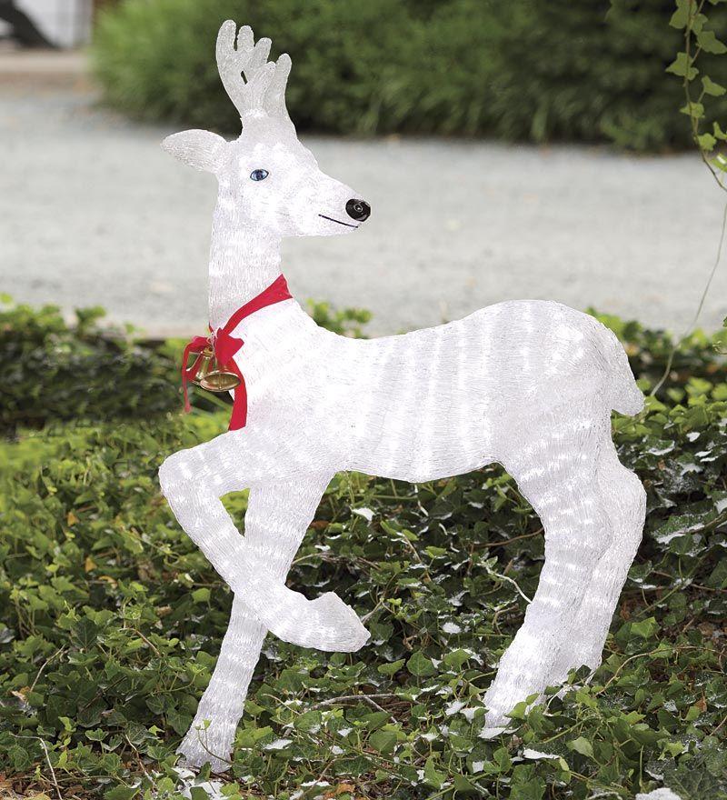 Lighted Deer | Solar
