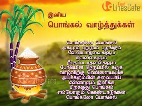 566 pongal greeting cards in tamil wallpaper tamilnescafe 566 pongal greeting cards in tamil wallpaper tamilnescafe m4hsunfo