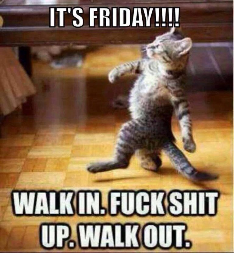 Top 18 Its Friday Meme With Images Funny Friday Memes Funny