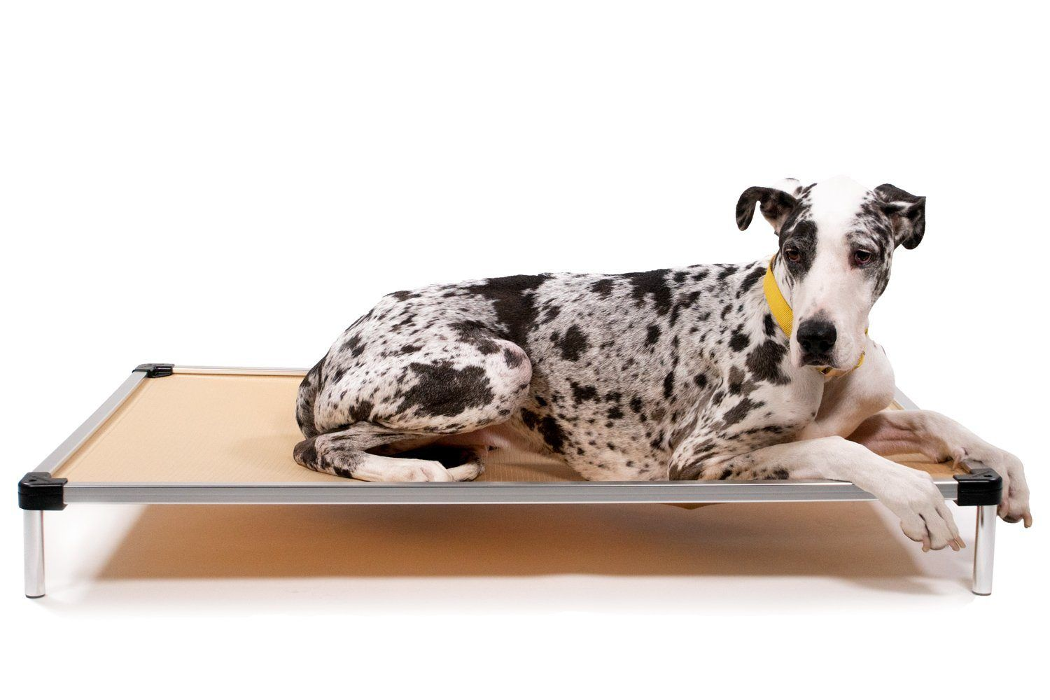 Chew Proof Elevated Dog Bed Indestructible Dog Beds K9 Ballistics In 2021 Elevated Dog Bed Indestructable Dog Bed Dog Bed