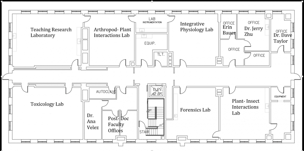 Image Result For Entomology Laboratory Science Biology Science Supplies Plant Physiology
