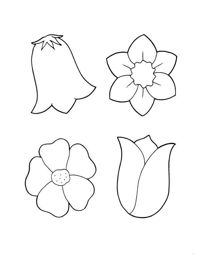 An Interesting Spring Flowers Coloring Pages