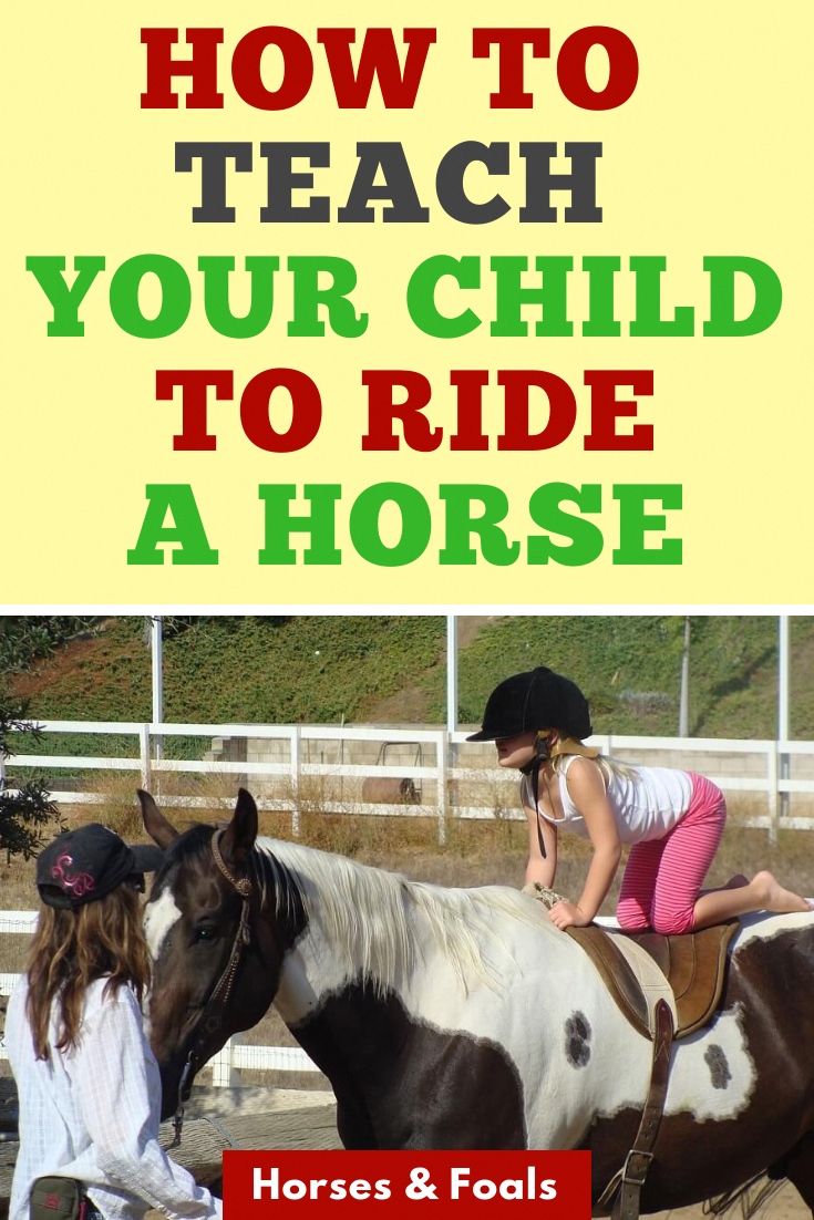 Pin By Horses Foals An Equine Blog On Equestrian Bloggers Group In 2020 Horses Older Horses Foals