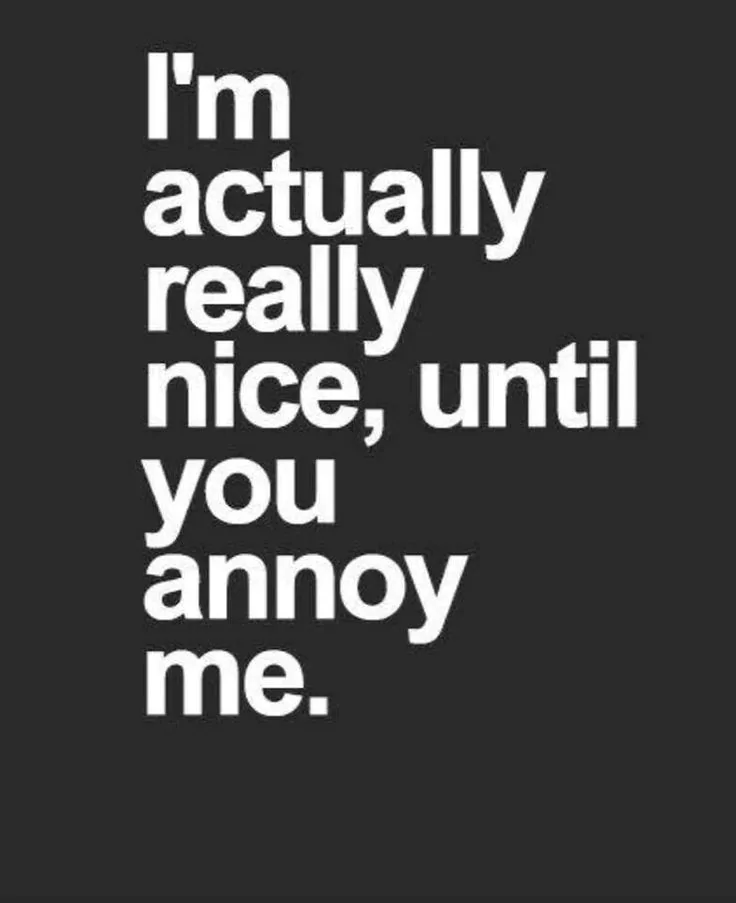 Funny sarcastic quotes about life and love