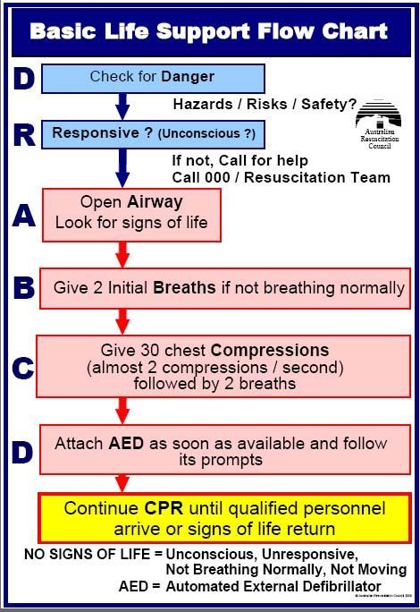 How to Perform CPR and Use an AED Respiratory Therapy Basic life