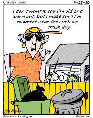 Pin By Kayla On Maxine Maxine Senior Humor Amusing