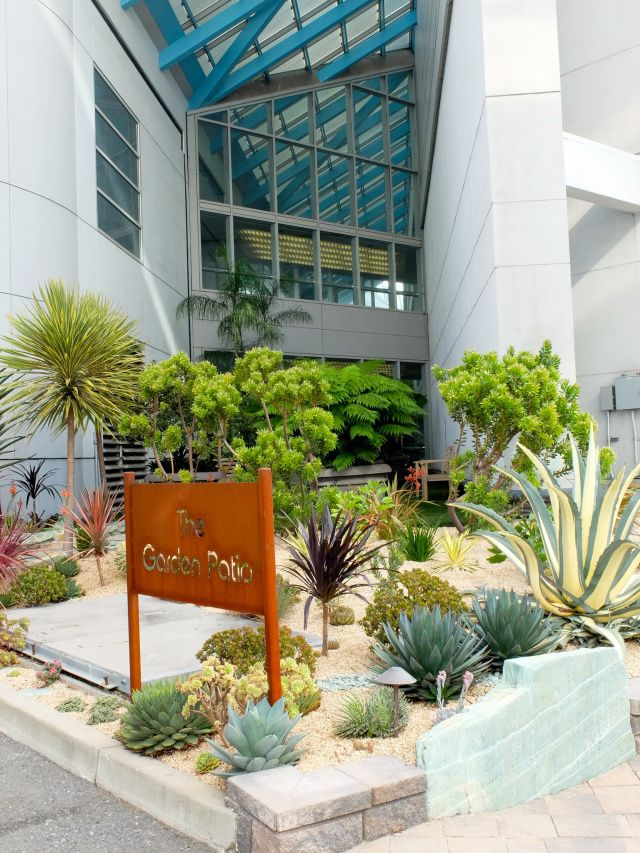 The surprising, stunning garden at San Francisco airport