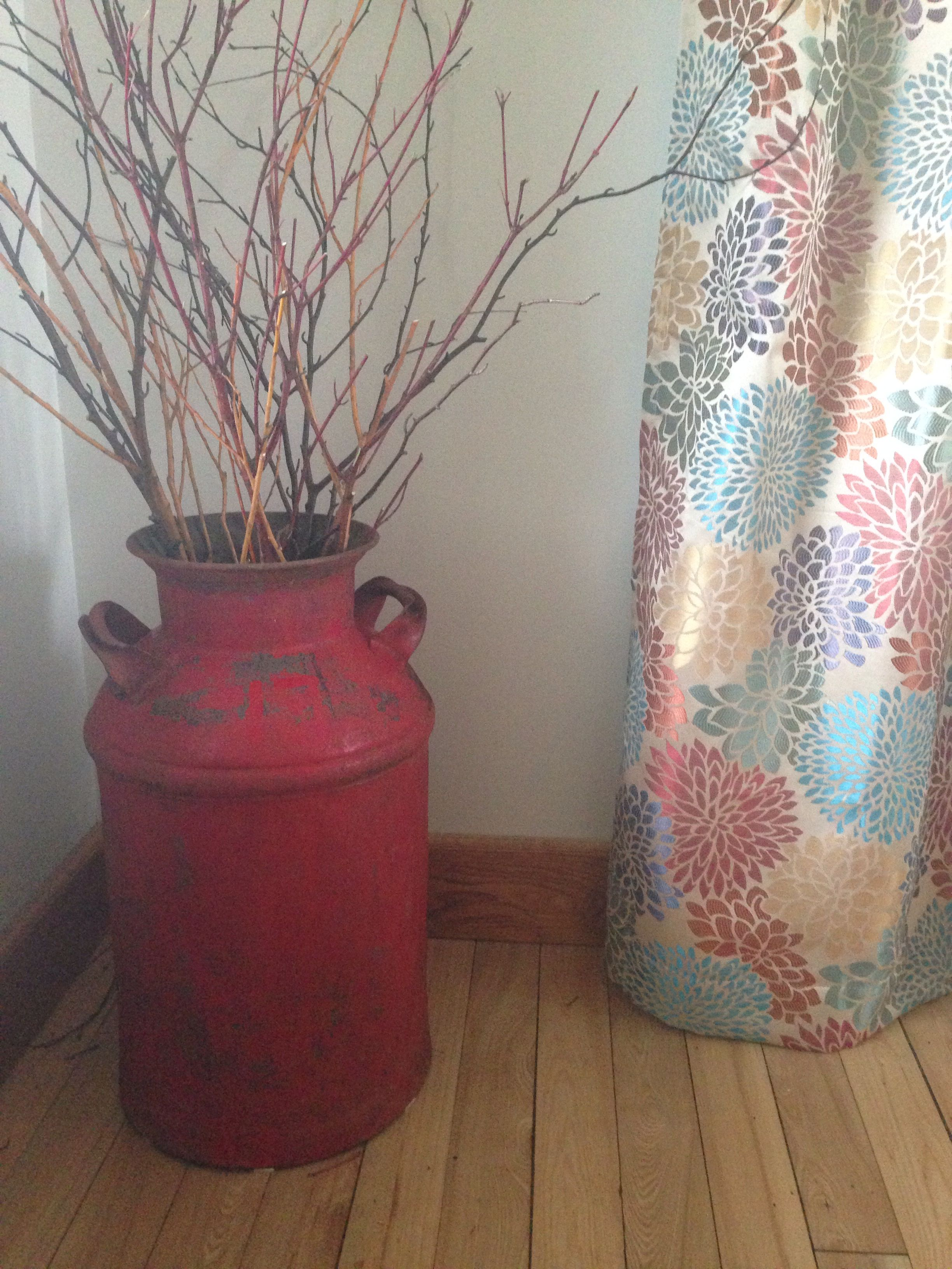 Milk Can Willow Dogwood Birch Branches Pier One Drape