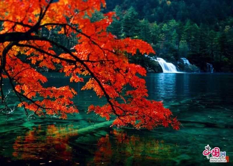 El valle Jiuzhaigou es una reserva natural y parque nacional situado en el norte de Sichuan, China.