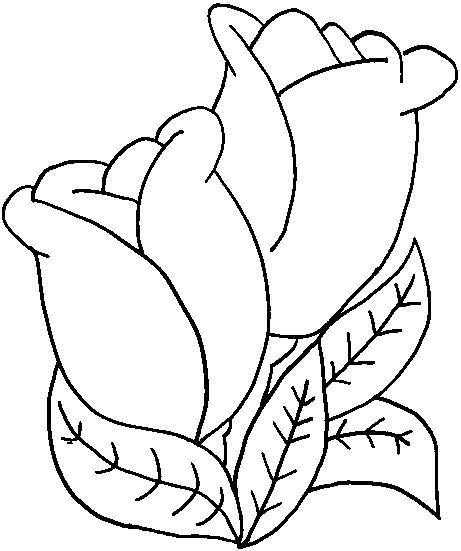 Dibujos De Flores Plantas Y Arboles Ezpinita Picasa Web Albums Flower Coloring Pages Flower Drawing Coloring Pages