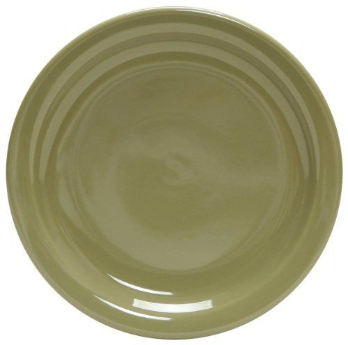 Colorcode Narrow Rim Round Dinner Plate Wasabi Set Of 4