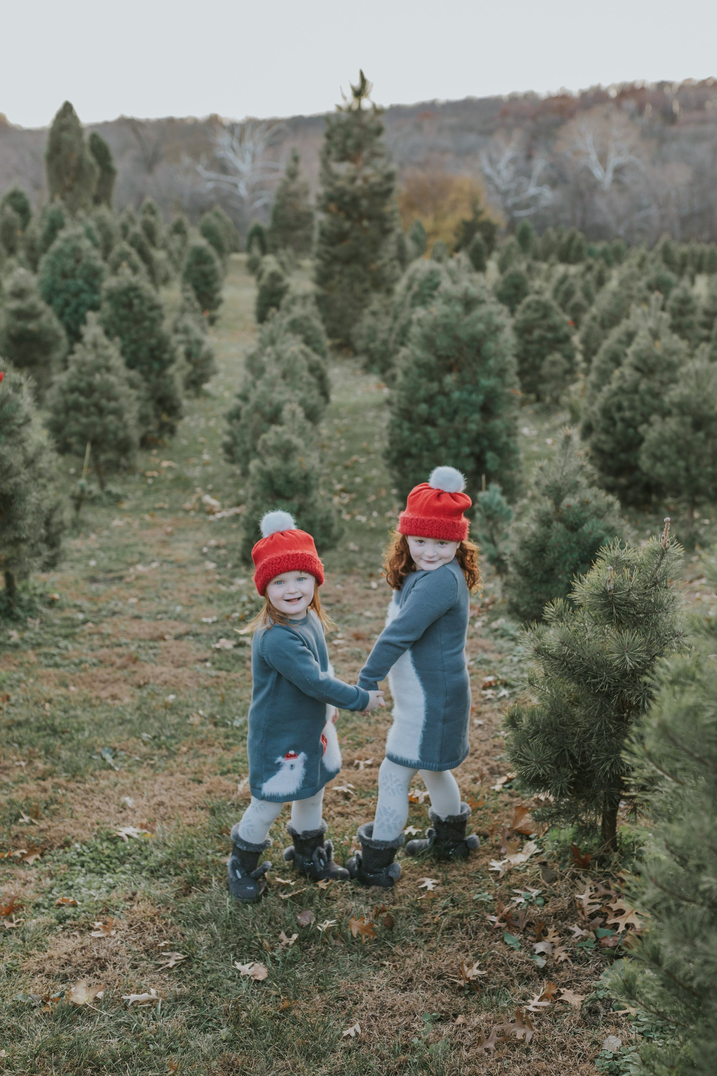 Lily Genna Winter Pictures Kids Pictures Kid Posing Kansas City Christmas Tree Farm Winter Pictures Elope Wedding Kansas City Wedding