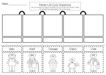 human life cycle sequencing cut and paste life science pinterest sequencing worksheets. Black Bedroom Furniture Sets. Home Design Ideas