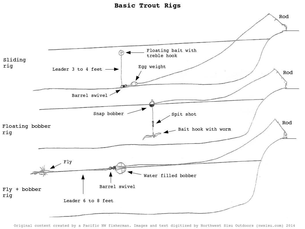 Basic Rig For Trout Fishing Google Search