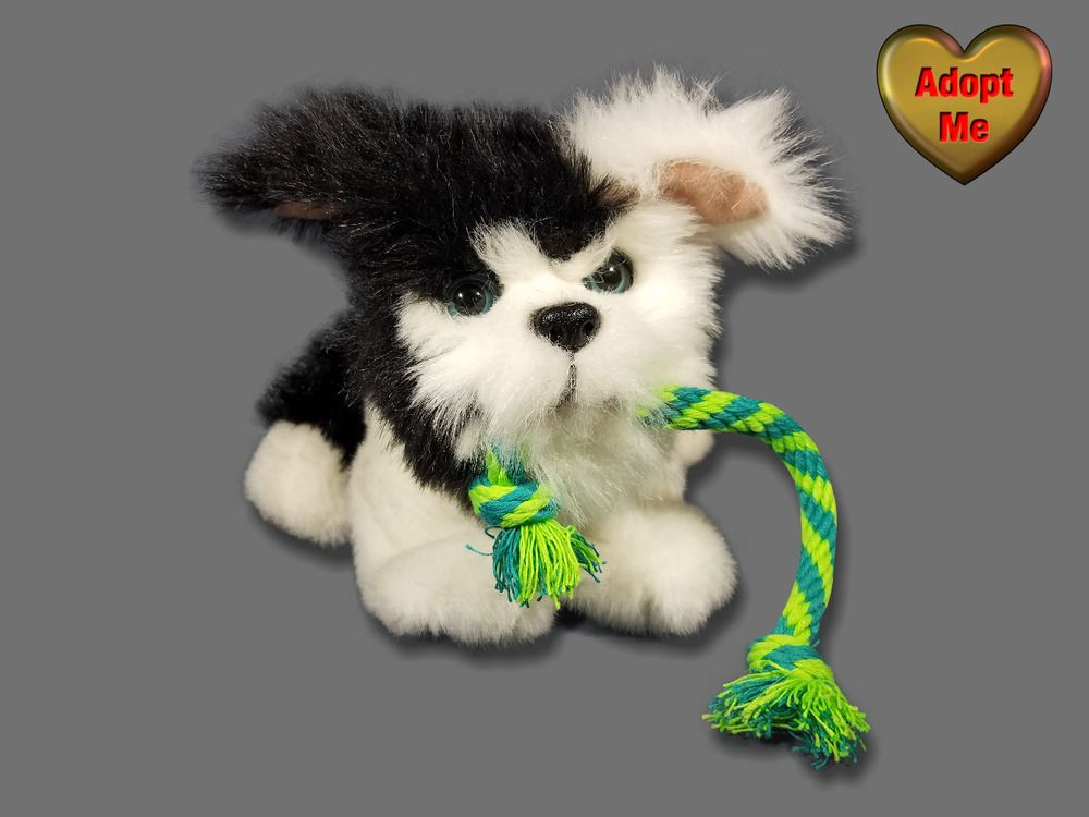 Hasbro Furreal Friends My Tugging Pup Black White Puppy Dog With